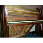 Rippen Maestro type-1 piano donker noten