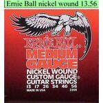 Ernie Ball 2204 snarenset elektrisch gitaar