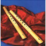 Choroi 55108000 C-fluit octa ahorn diatonisch duitse boring 7+1 gaten