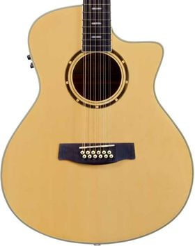 HAGSTROM Siljan E/A.Grand Auditorium 12-snarige gitaar