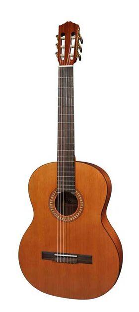 Salvador Cortez CC-22 4/4 Solid Top Artist Series klassieke gitaar