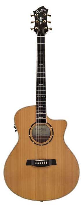Hagstrom Elfdalia elgra-ce E/Acst. western gitaar